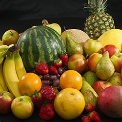 میوه فصل باغ مجنون